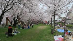 IMG_0732 清洲古城跡公園